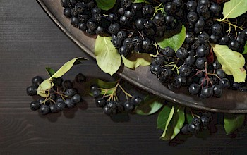 Chokeberry - calories, nutrition, weight
