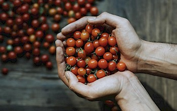 Cherry tomato - calories, nutrition, weight