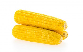 Corn on the cob - calories, nutrition, weight