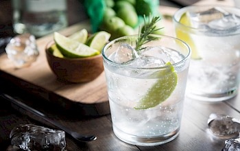 Gin and tonic - calories, nutrition, weight