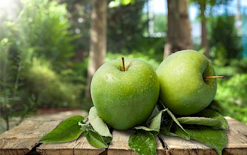 Green apple Granny Smith - calories, nutrition, weight