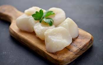 Scallops - calories, nutrition, weight