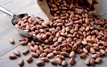 Pinto beans - calories, nutrition, weight