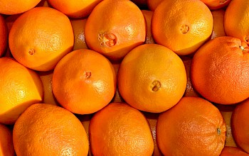 Navel orange - calories, nutrition, weight
