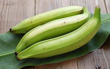 Plantain - calories, nutrition, weight