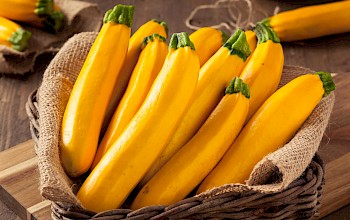 Yellow squash  - calories, nutrition, weight