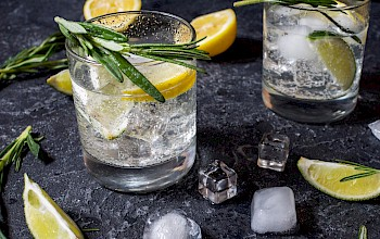 Vodka and tonic - calories, nutrition, weight
