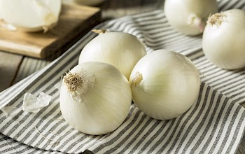 White onions - calories, nutrition, weight