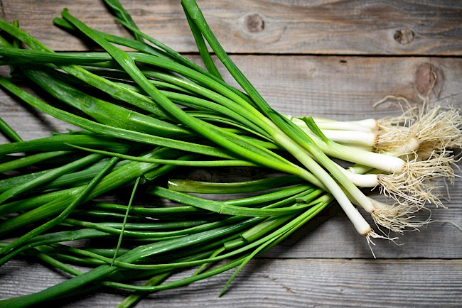 Green onions - calories, kcal, weight, nutrition