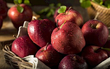 Red delicious apple - calories, nutrition, weight