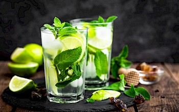 Mojito - calories, nutrition, weight