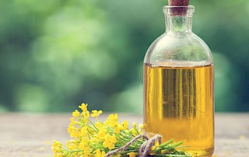 Canola oil - calories, nutrition, weight