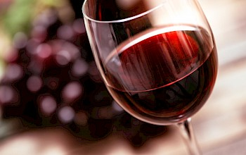 Merlot - calories, nutrition, weight