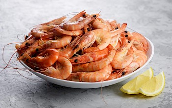 Cooked shrimp - calories, nutrition, weight