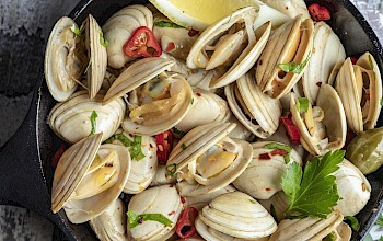 Clams - calories, nutrition, weight