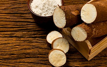Yuca - calories, nutrition, weight