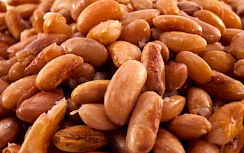 Cooked pinto beans - calories, nutrition, weight