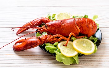 Boiled lobster - calories, nutrition, weight