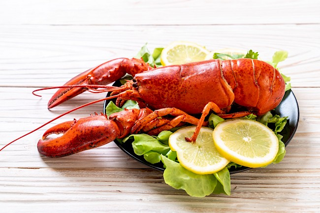 Boiled lobster - calories, kcal