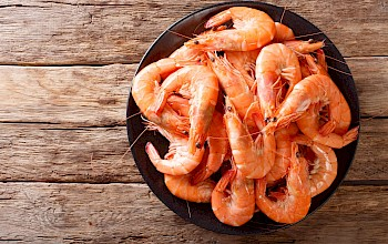 Boiled shrimp - calories, nutrition, weight