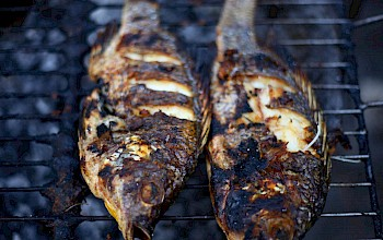 Grilled tilapia - calories, nutrition, weight