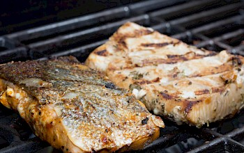 Grilled mahi mahi - calories, nutrition, weight