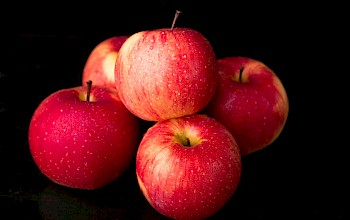 Apple - calories, nutrition, weight