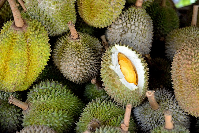 Durian - calories, kcal, weight, nutrition
