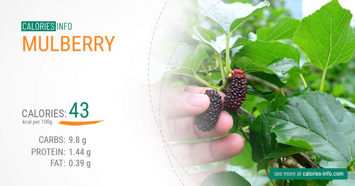 Mulberry - caloies, wieght