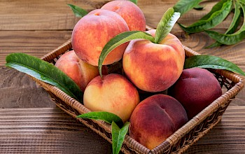 Peach - calories, nutrition, weight