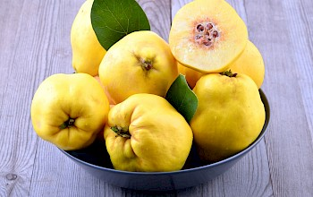 Quince fruit - calories, nutrition, weight
