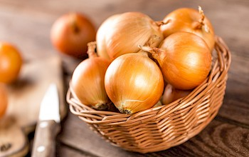 Onion - calories, nutrition, weight