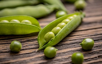 Peas - calories, nutrition, weight
