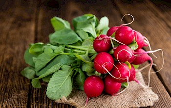 Radish - calories, nutrition, weight