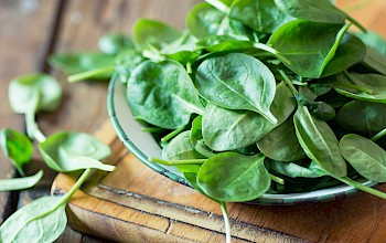 Spinach - calories, nutrition, weight