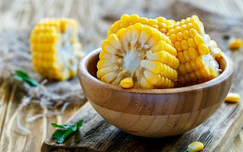 Corn - calories, nutrition, weight