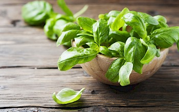 Basil - calories, nutrition, weight