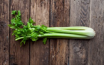 Celery - calories, nutrition, weight