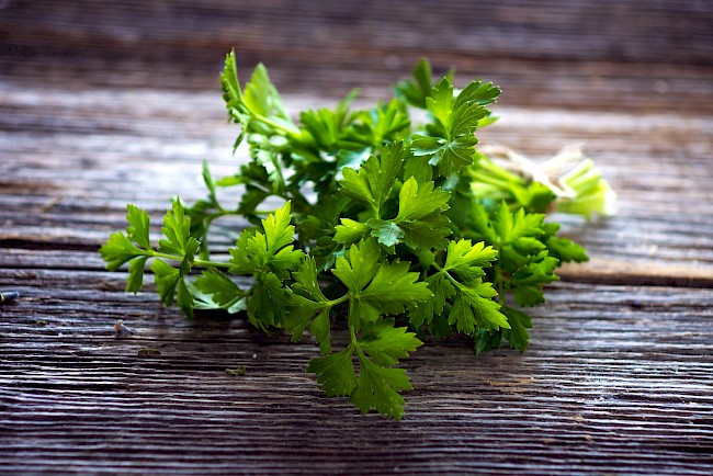 Parsley - calories, kcal, weight, nutrition
