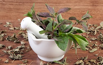 Peppermint - calories, nutrition, weight