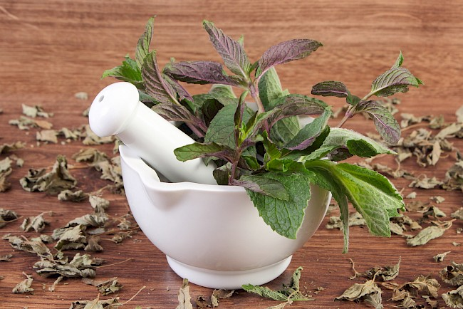 Mint - calories, kcal, weight, nutrition