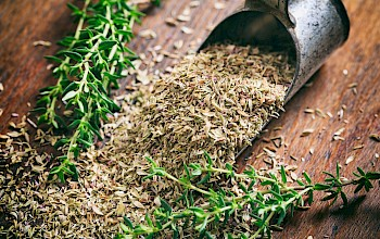 Thyme - calories, nutrition, weight