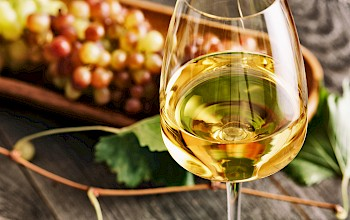 White wine - calories, nutrition, weight