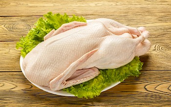 Duck - calories, nutrition, weight