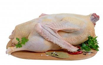 Goose - calories, nutrition, weight