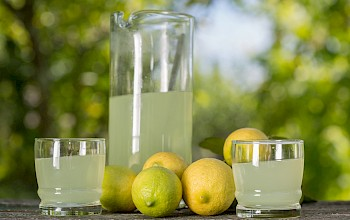 Lemon juice - calories, nutrition, weight