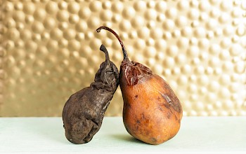 Dried pears - calories, nutrition, weight