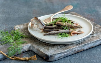 Anchovy - calories, nutrition, weight