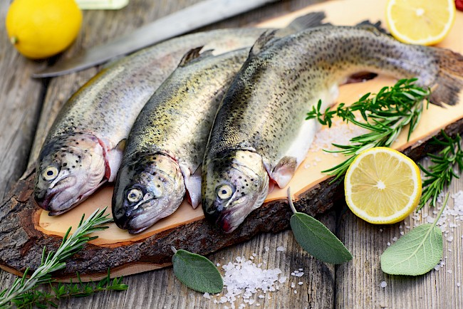 Trout - calories, kcal, weight, nutrition