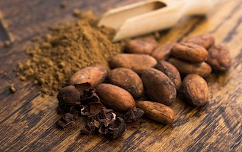 Cocoa - calories, nutrition, weight